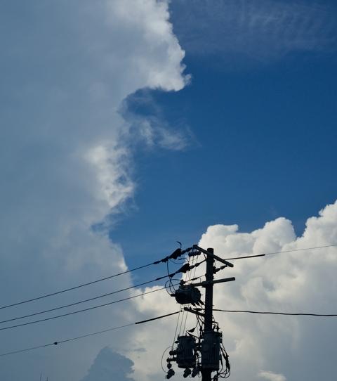 広島がアツい!_d0162133_1685913.jpg