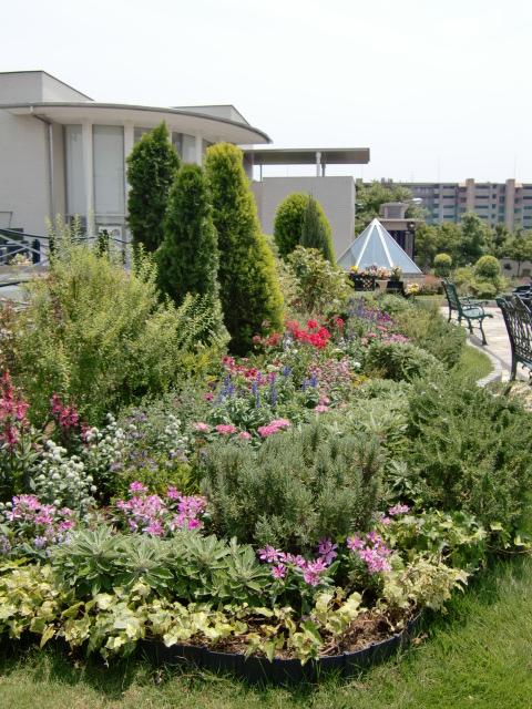 園内の花 完成!_b0263390_16224439.jpg