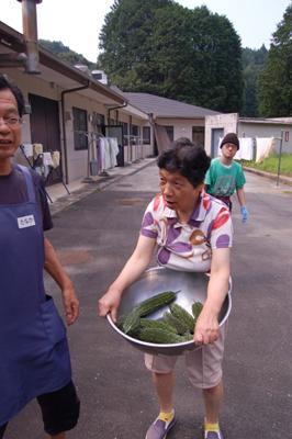 ゴーヤの収穫祭☆_a0154110_10352478.jpg