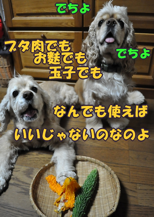 b0067012_04295.jpg