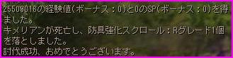 b0062614_171693.jpg