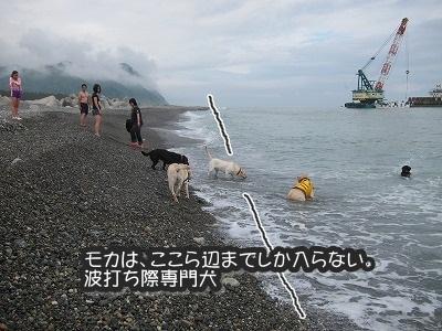 白馬旅行 2012夏の巻 2_e0192217_12154345.jpg