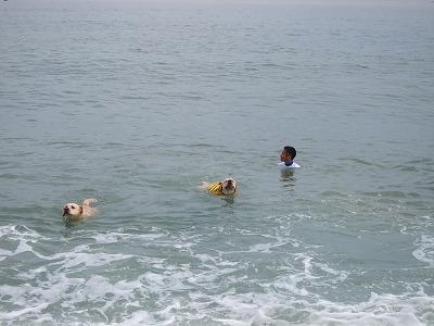白馬旅行 2012夏の巻 2_e0192217_1232119.jpg
