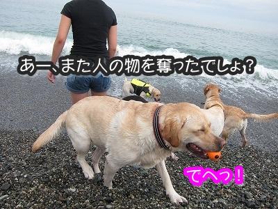 白馬旅行 2012夏の巻 2_e0192217_1243564.jpg