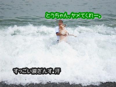 白馬旅行 2012夏の巻 2_e0192217_12442581.jpg