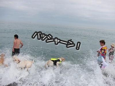 白馬旅行 2012夏の巻 2_e0192217_12451972.jpg