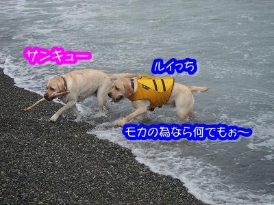 白馬旅行 2012夏の巻 2_e0192217_12484784.jpg
