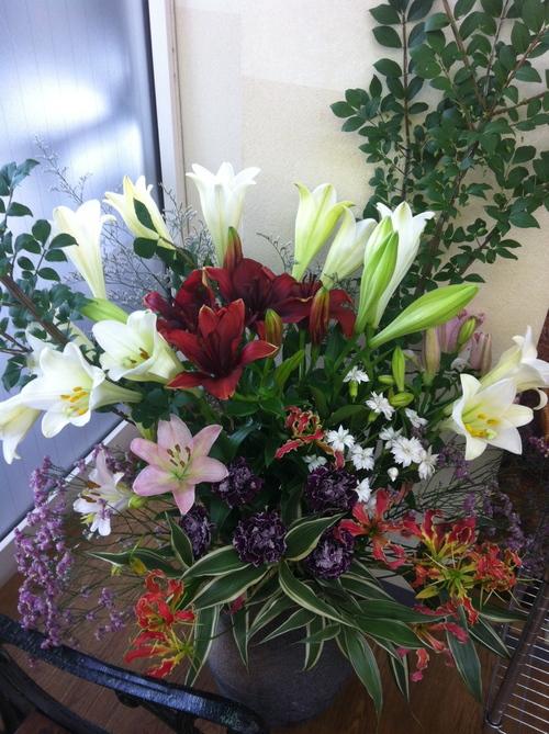 今週のお花とセール情報_a0200423_1914932.jpg