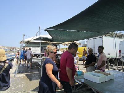 ポッツァーロの魚市場 バゥ_d0084229_1023531.jpg