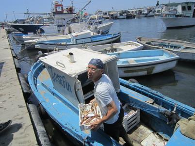 ポッツァーロの魚市場 バゥ_d0084229_1041676.jpg