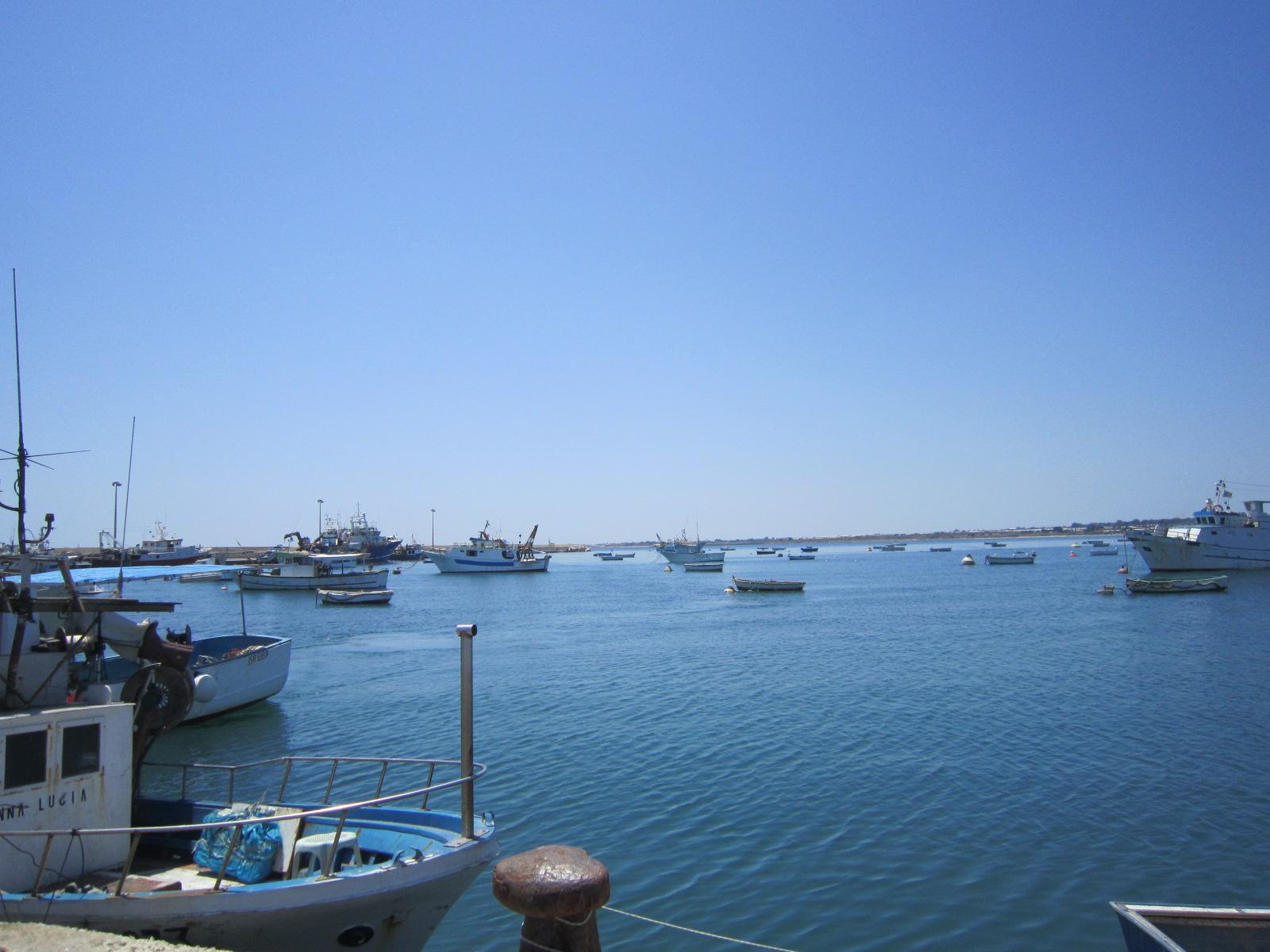 ポッツァーロの魚市場 バゥ_d0084229_106137.jpg