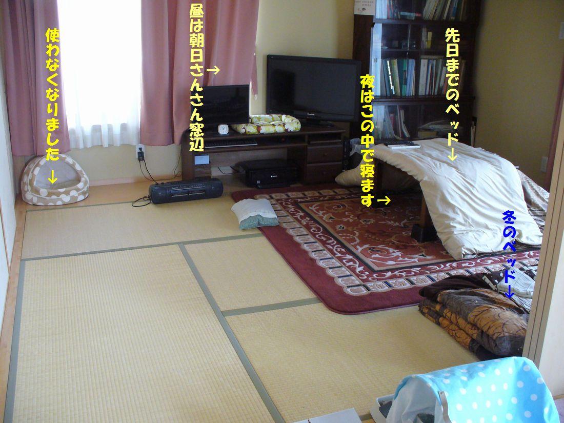 f0217971_23104041.jpg