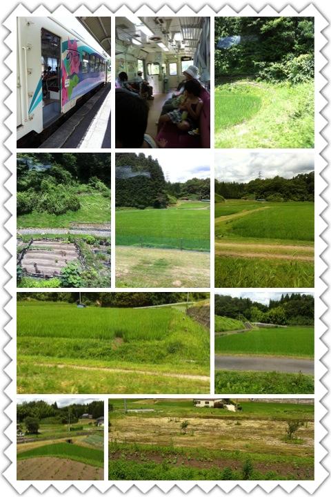 明知鉄道_b0008478_553611.jpg
