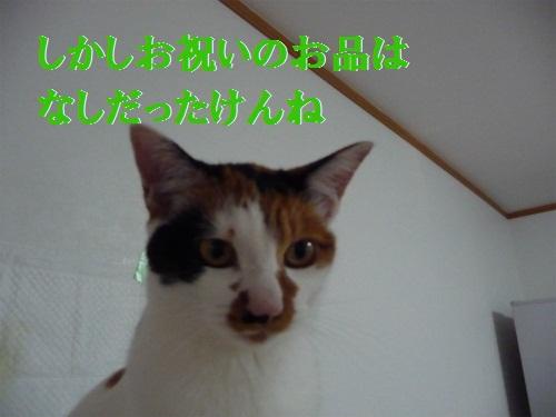 e0072606_1430553.jpg