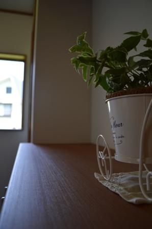 南魚沼市で真夏の体感完成見学会!_a0128408_14223659.jpg