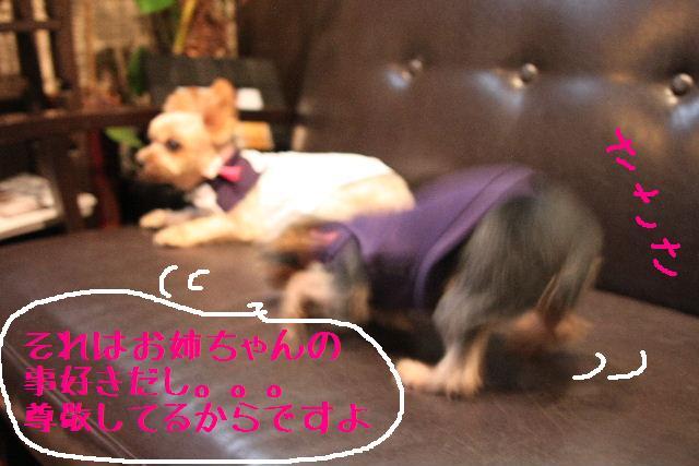 強いんだなぁ~!!_b0130018_012211.jpg