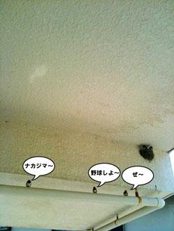 f0202818_2348097.jpg
