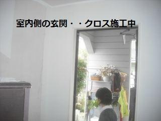 f0031037_2151266.jpg