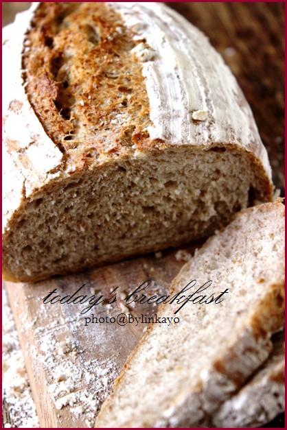 pain de seigle_b0225758_16505542.jpg
