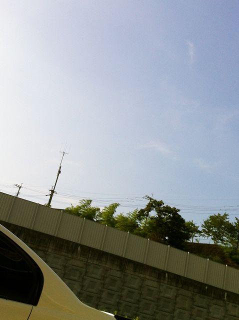 夏やな〜_e0228869_842963.jpg
