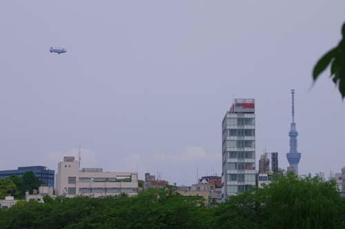 また上野・東博、西洋美で見たこと_f0211178_15393776.jpg