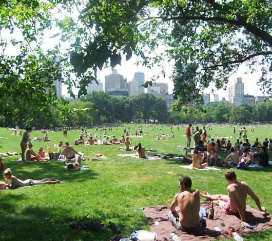 夏のニューヨークのセントラルパークはビーチ状態_b0007805_9521889.jpg