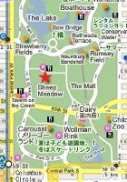 夏のニューヨークのセントラルパークはビーチ状態_b0007805_9522712.jpg