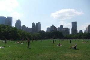 夏のニューヨークのセントラルパークはビーチ状態_b0007805_9554350.jpg