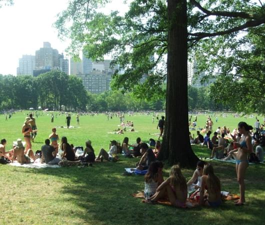 夏のニューヨークのセントラルパークはビーチ状態_b0007805_9562921.jpg