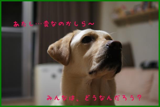 d0250709_16271946.jpg