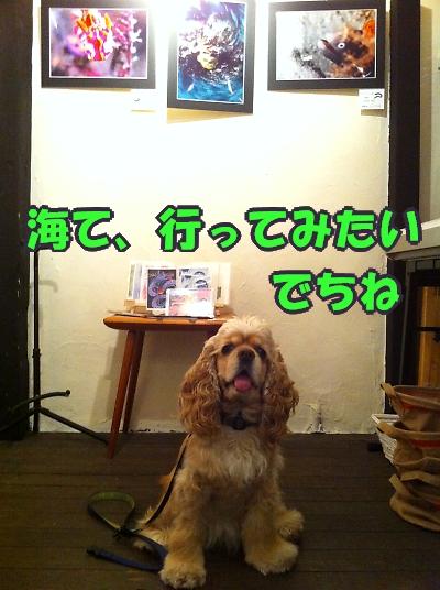 b0067012_1272140.jpg