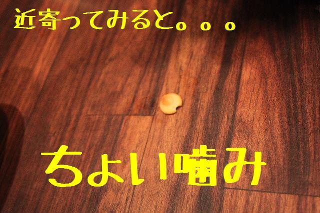 b0130018_22552274.jpg