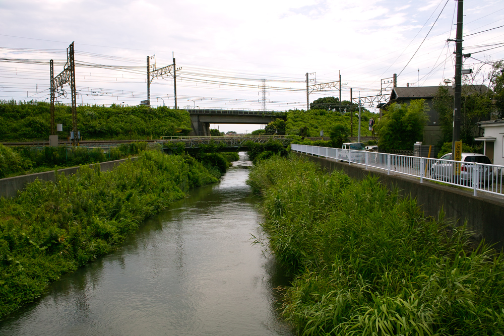 DP1xと中判フィルムGA645Wで巡る夏の坂川_c0223825_1415416.jpg