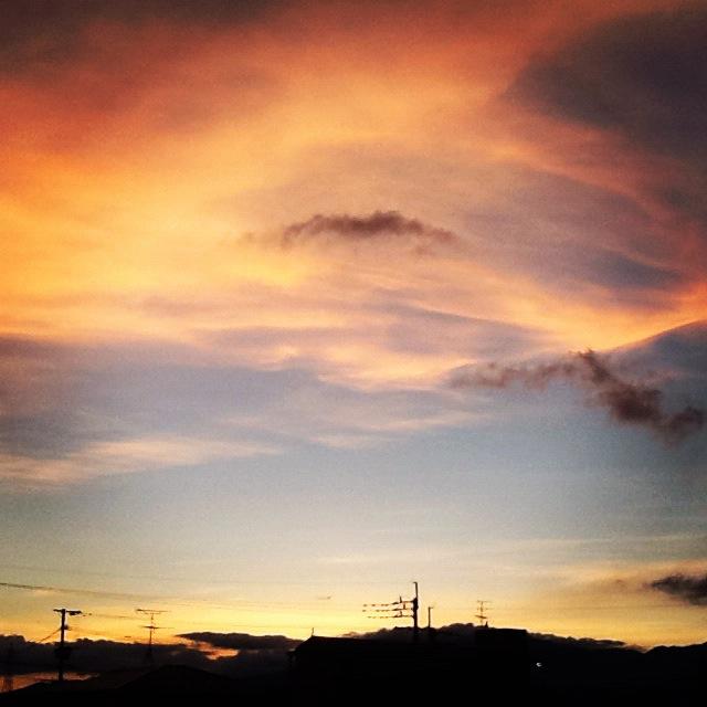 横浜赤レンガ倉庫出展ラインナップ2。_b0125443_20531681.jpg
