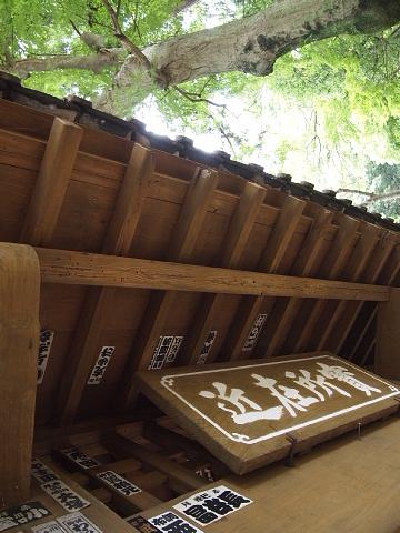 ◆鎌倉スナップ・その3 浄智寺①_b0008655_10183520.jpg