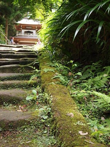 ◆鎌倉スナップ・その3 浄智寺①_b0008655_10185191.jpg