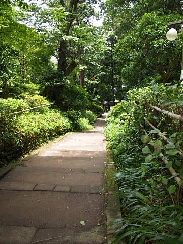 ◆鎌倉スナップ・その3 浄智寺①_b0008655_1019668.jpg