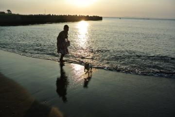 夕日に向かって泳げ。_d0143957_20505987.jpg