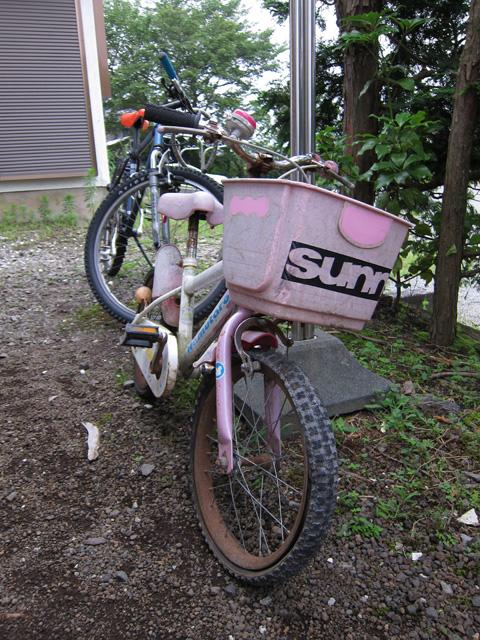 明日は伊那市へ 自転車レストア完了_c0166765_0475578.jpg