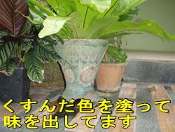 d0086871_19523216.jpg