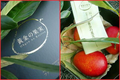 石垣島から、「黄金の果実」。熟れたマンゴー娘。_e0236072_1511352.jpg