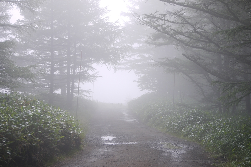 山本小屋ふる里館 ~早朝絶景ツアーと朝ごはん~_a0127090_21255598.jpg