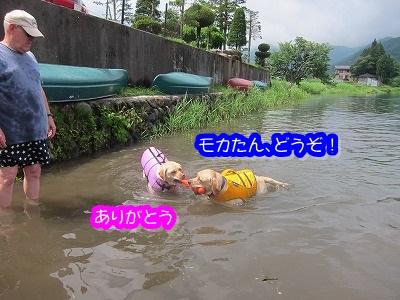 白馬旅行 2012夏の巻 4_e0192217_20213487.jpg