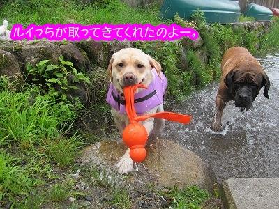 白馬旅行 2012夏の巻 4_e0192217_2021426.jpg