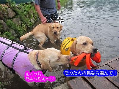 白馬旅行 2012夏の巻 4_e0192217_2044099.jpg