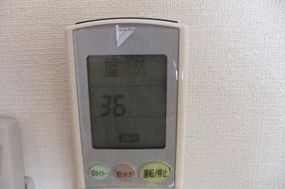 ヒキコモリ_f0085219_16392650.jpg