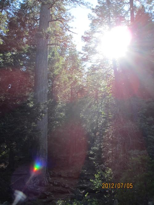 ちょっと涼んでいただきましょうシャスタのマクラウド滝_e0131324_1132786.jpg