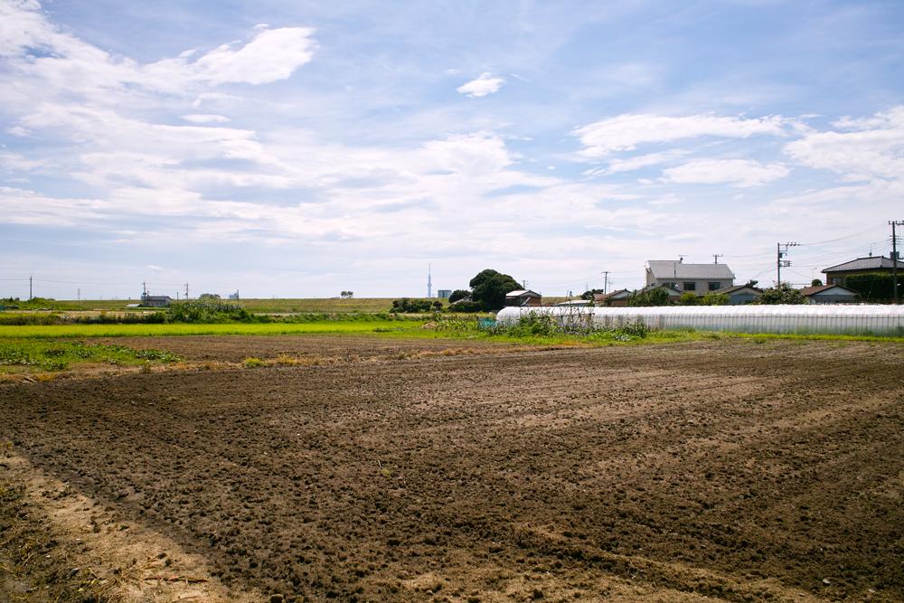 田んぼは青々と。坂川は水田地域へ~GA645WとDP1xでめぐる坂川~_c0223825_1424946.jpg