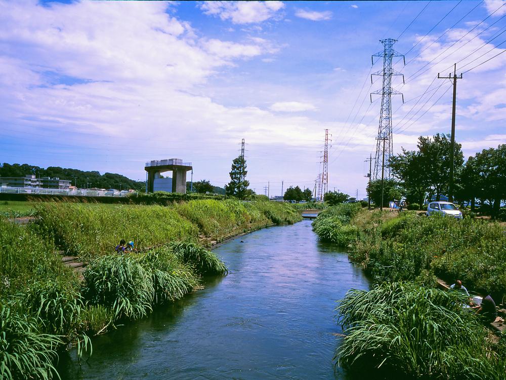 田んぼは青々と。坂川は水田地域へ~GA645WとDP1xでめぐる坂川~_c0223825_237242.jpg