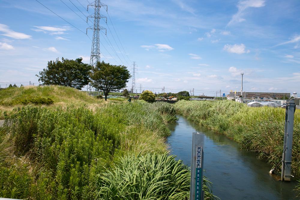 田んぼは青々と。坂川は水田地域へ~GA645WとDP1xでめぐる坂川~_c0223825_2463220.jpg